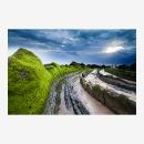 greenvelvet01web